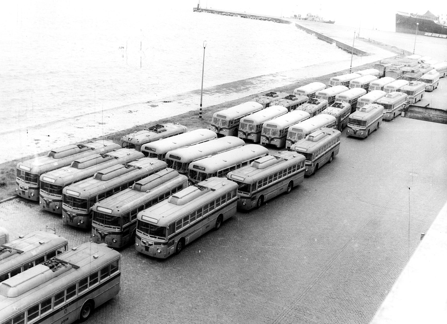 Trolebuses y omnibus en el puerto - Foto:  coleccion A. Silva
